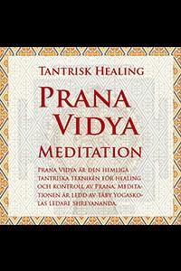 Prana Vidya