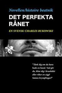 novellen-histoire-beatnik-det-perfekta-ranet-sml